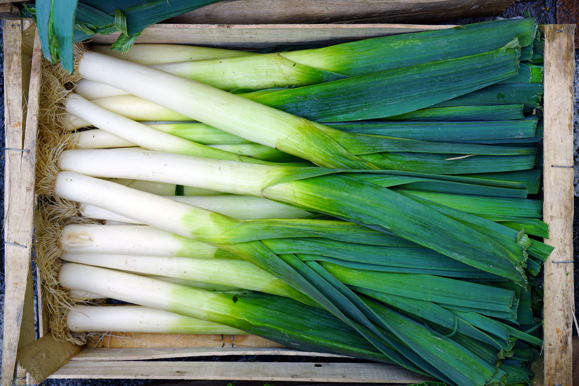 Leeks in crate at farmers' market