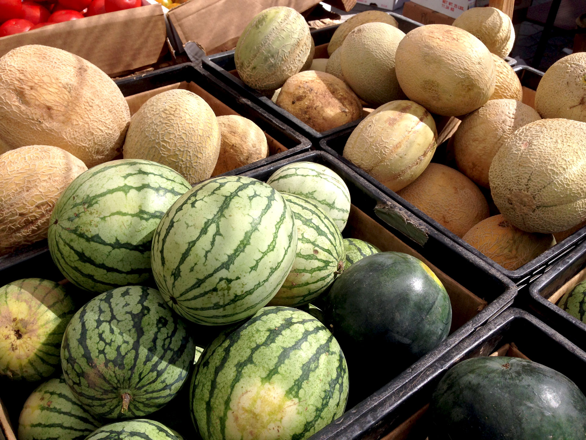 Melons at farmers market