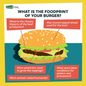 What's the foodprint of your burger?