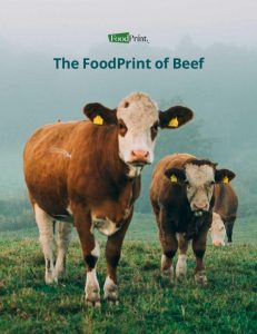 FoodPrint of Beef Report Cover