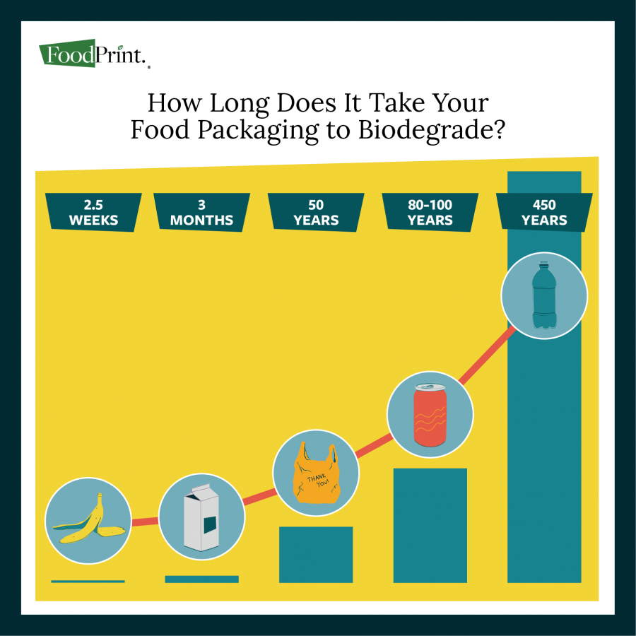 How Long Does it Take Your Food Packaging to Biodegrade?