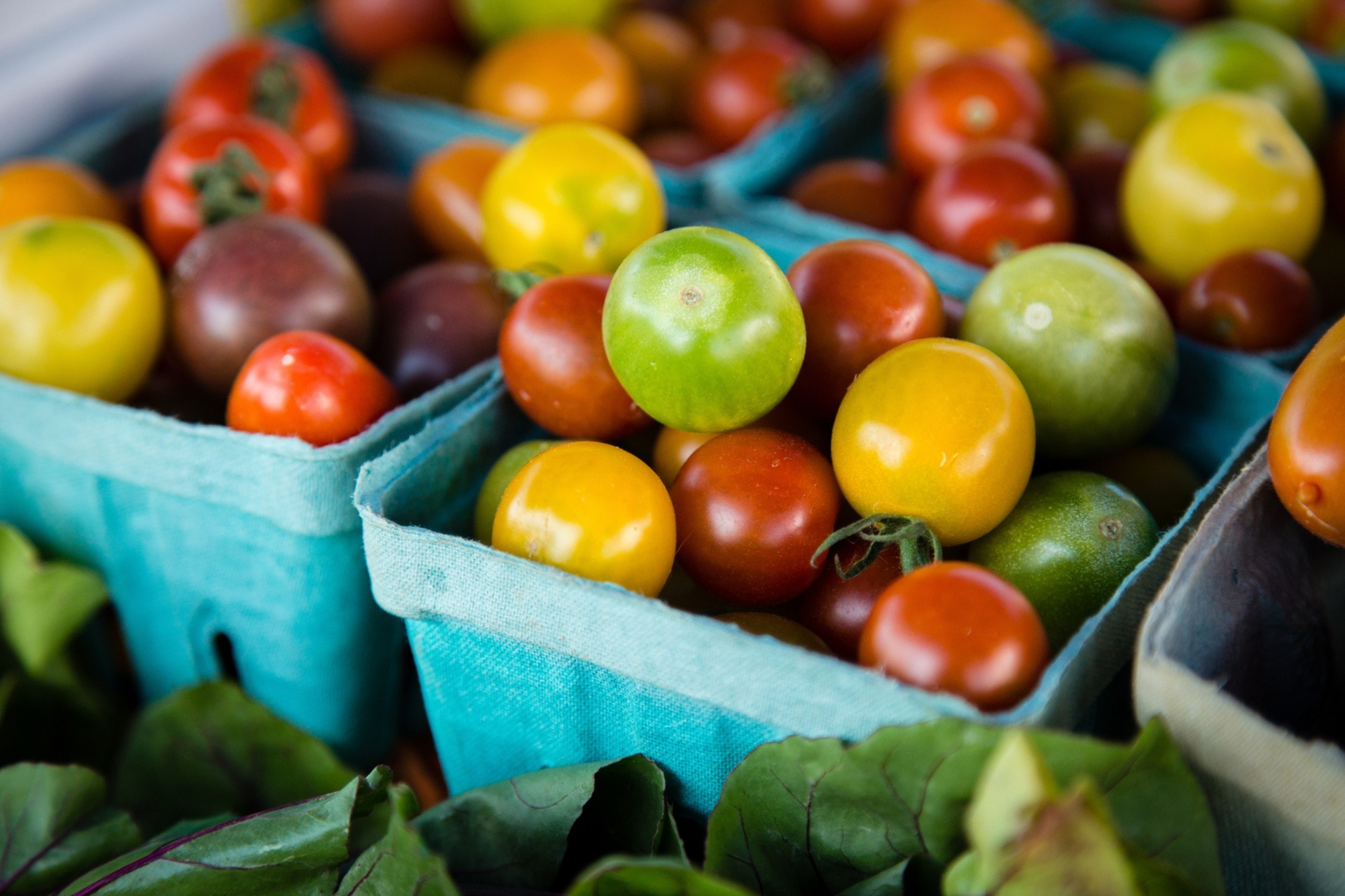 heirloom cherry tomatoes in crates