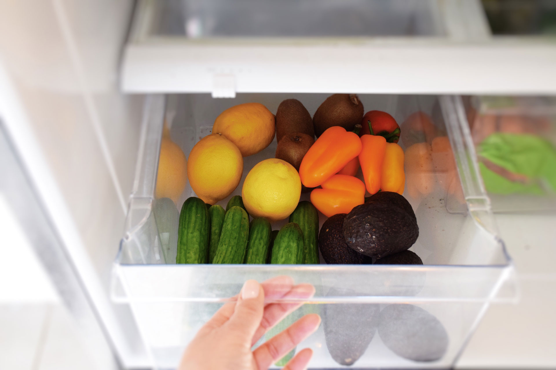 Person opening a vegetable drawer in a refrigerator