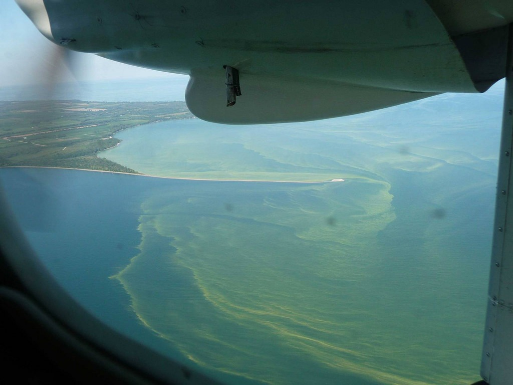 plane flying over algal bloom