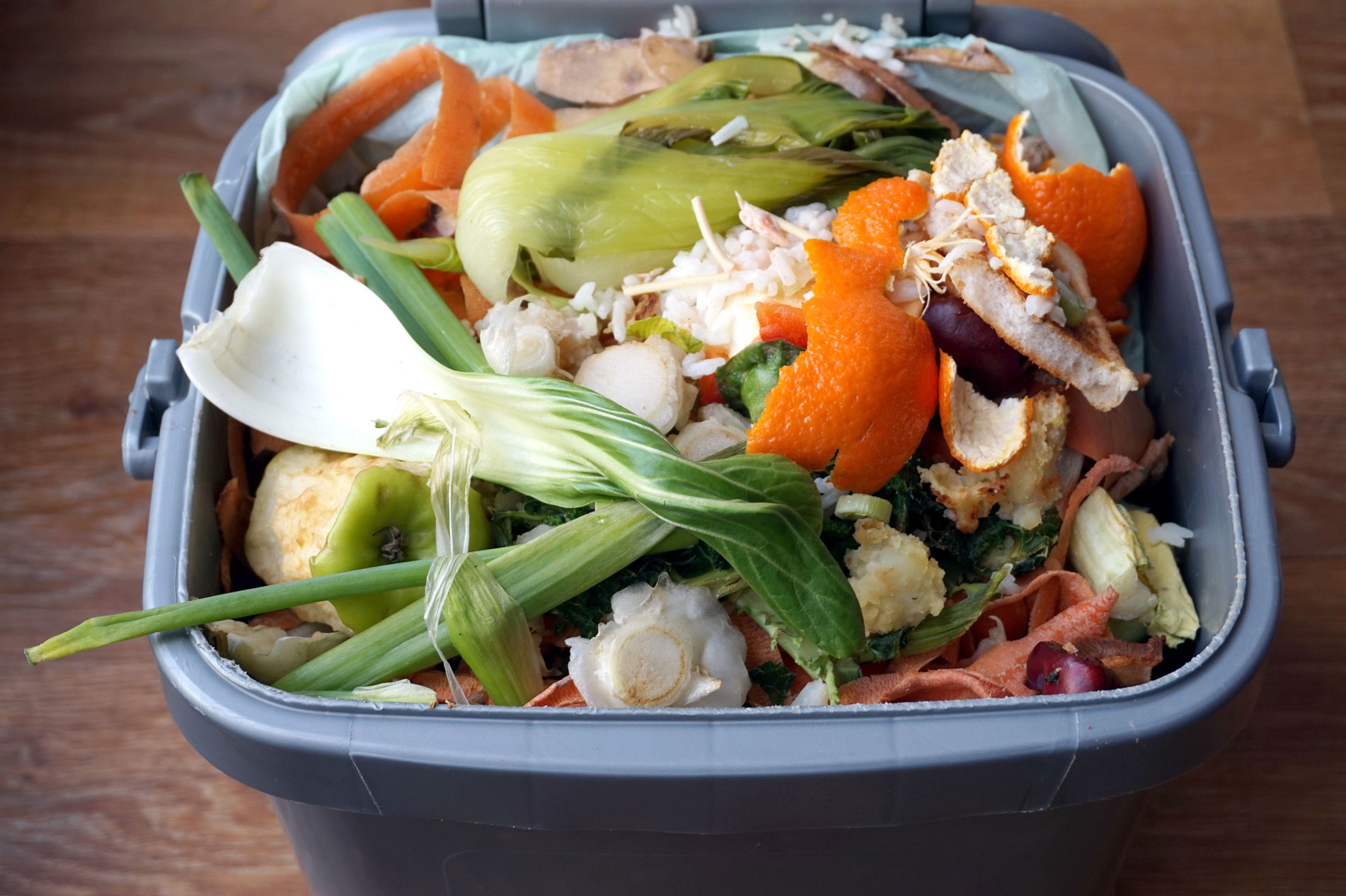 Use compost bins to prevent and reduce food waste