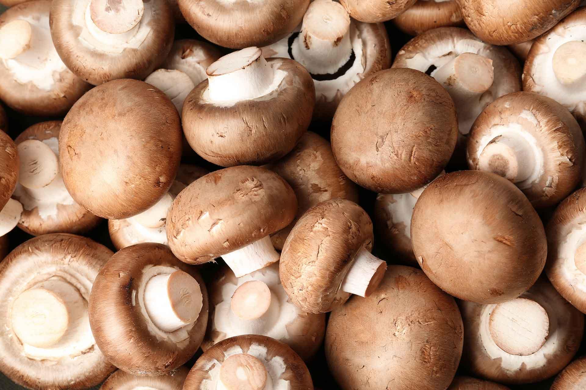 brown button mushrooms