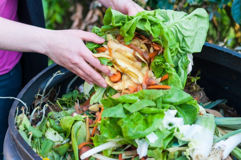 food waste going into bin