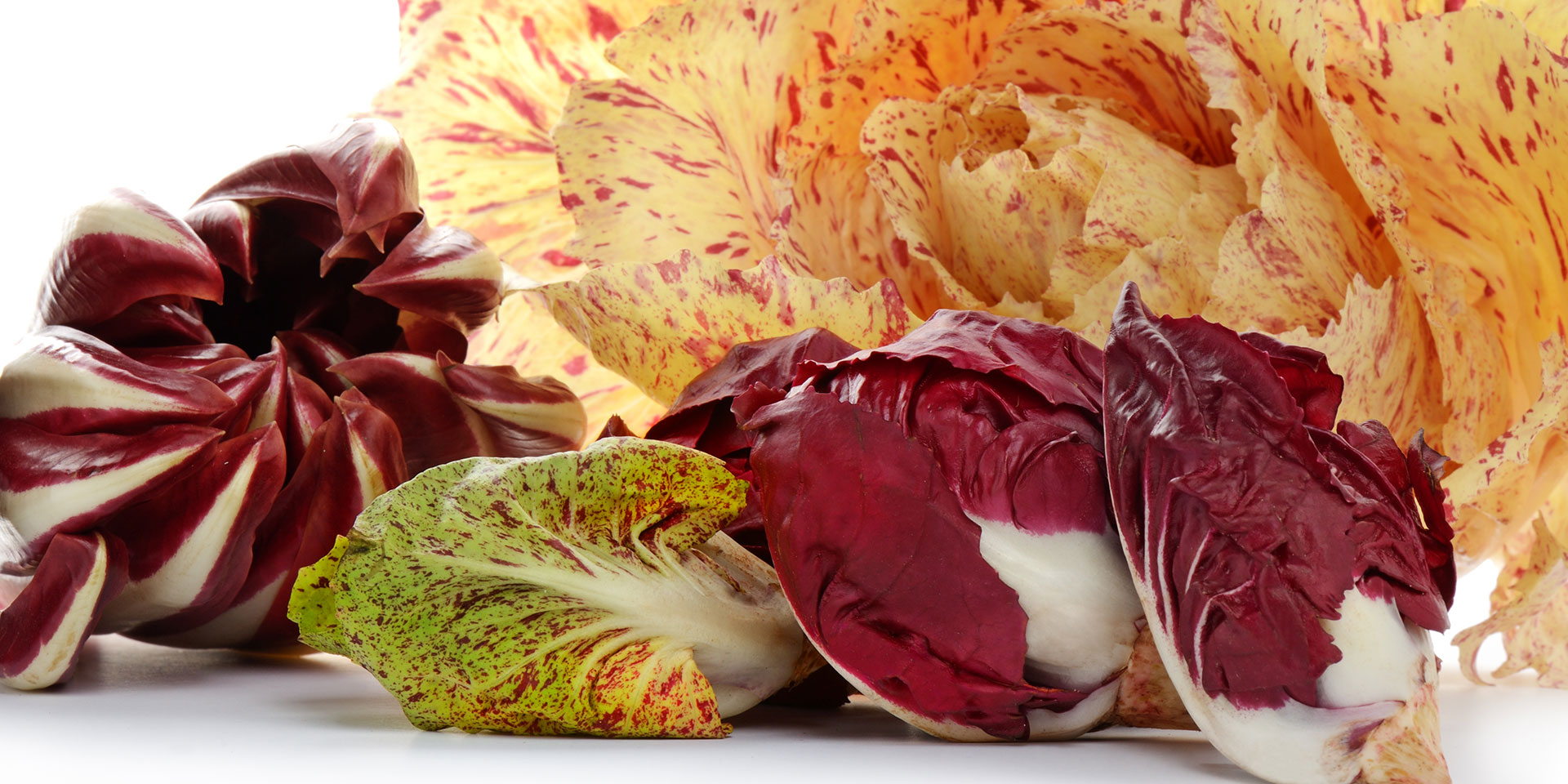 Eat Seasonally This Winter With Radicchio